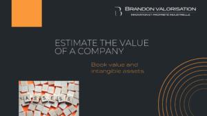 Estimate the value of a company_Brandon Valorisation